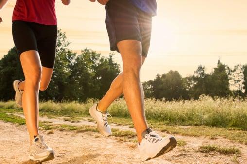 wellness programs and PPACA