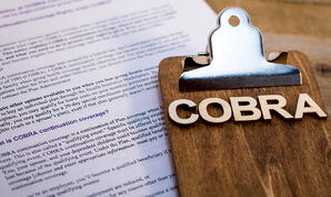 COBRA_Updated_Model